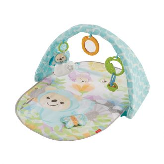 Fisher-Price-Butterfly-Dreams-Musical-Playtime-Gym-8224_media_2_23155